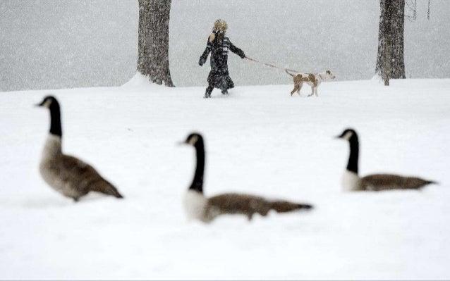 RJ Sangosti/The Denver Post/Getty Images