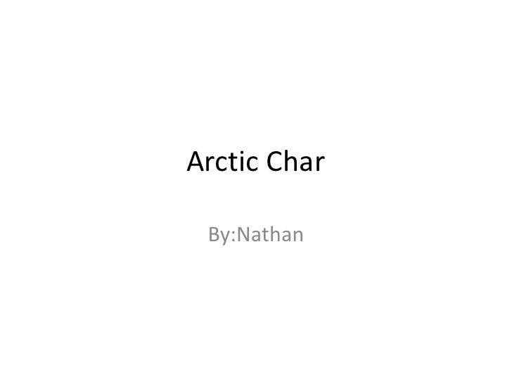 Arctic Char<br />By:Nathan<br />