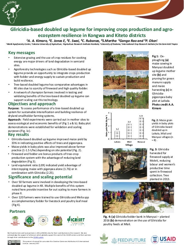Gliricidia-based doubled up legume for improving crops production and agro- ecosystem resilience in Kongwa and Kiteto dist...