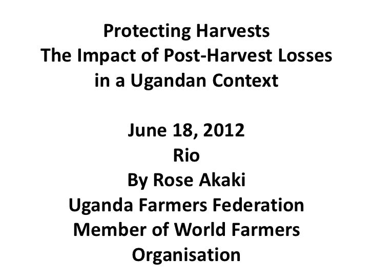 Protecting HarvestsThe Impact of Post-Harvest Losses      in a Ugandan Context        June 18, 2012             Rio       ...