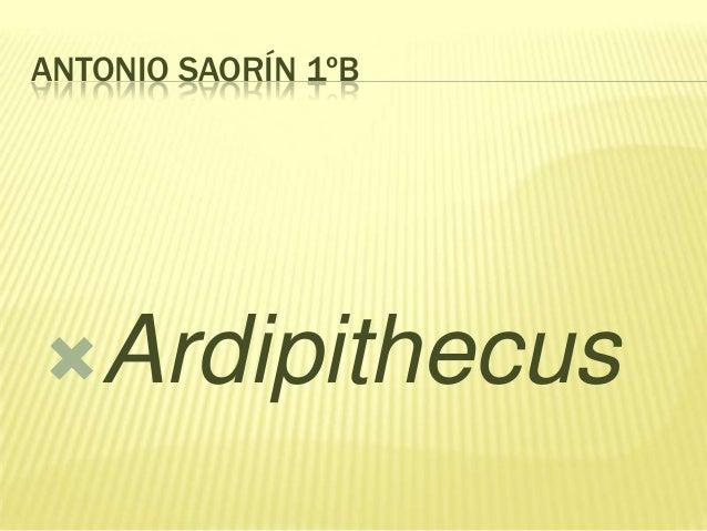 ANTONIO SAORÍN 1ºB  Ardipithecus