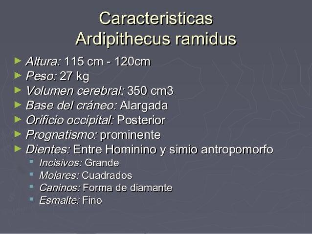 Resultado de imagen de El final del El Ardipithecus ramidus