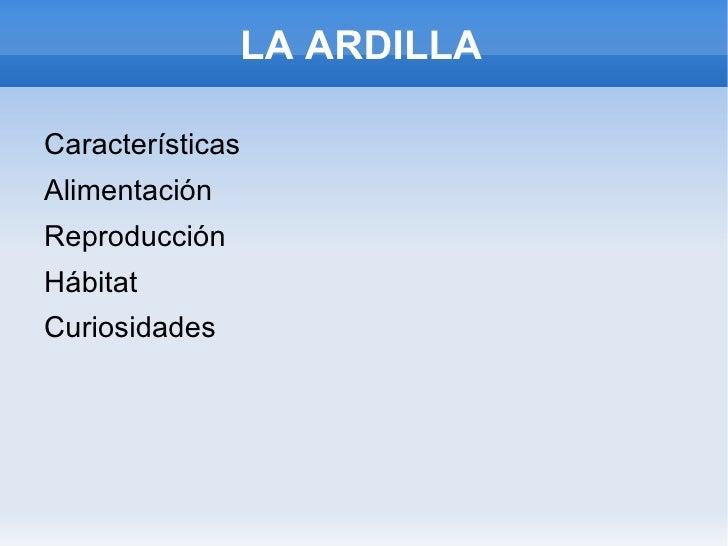LA ARDILLA <ul><li>Características