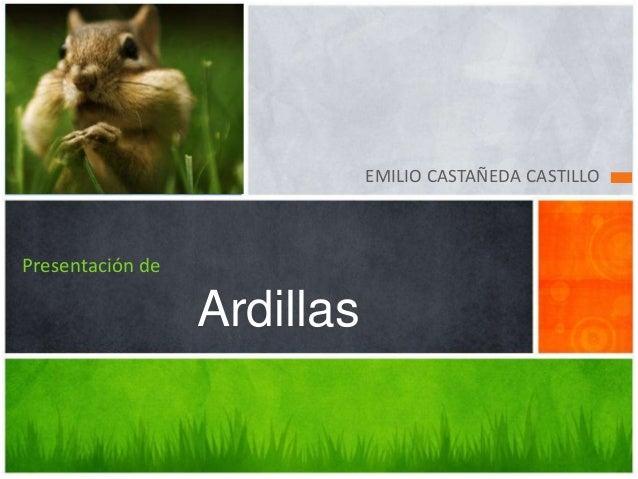 EMILIO CASTAÑEDA CASTILLOPresentación de                  Ardillas