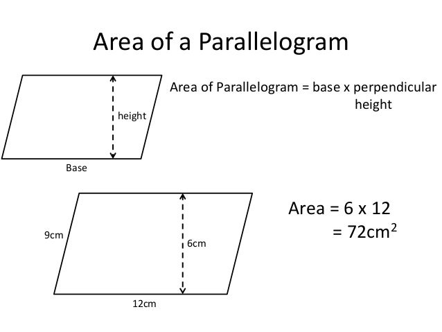 area of parallelogram and trapezium worksheet pdf