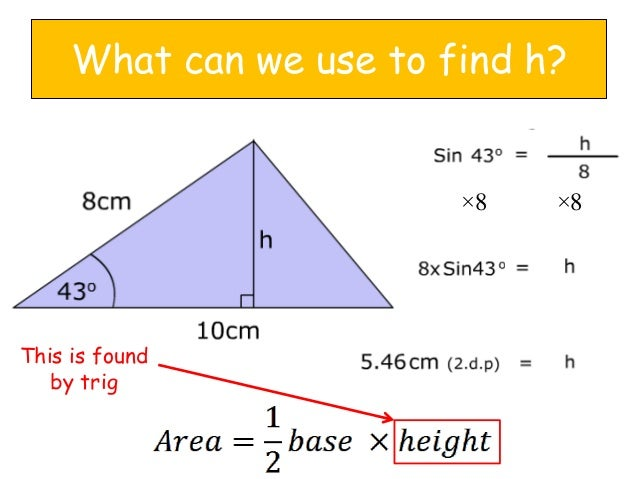 area of triangle The base of a triangle can be any side the height of a triangle is the perpendicular distance from the base to the opposite side here is a chart similar to those we looked at yesterday to help you understand how to find the area of a triangle, along with a picture to help you learn.