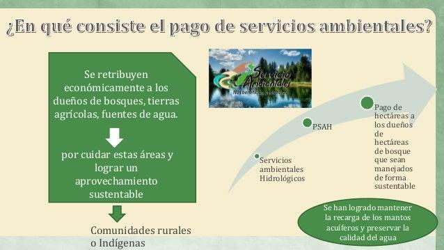 Reas naturales protegidas bloque 5 for Importancia economica ecologica y ambiental de los viveros forestales