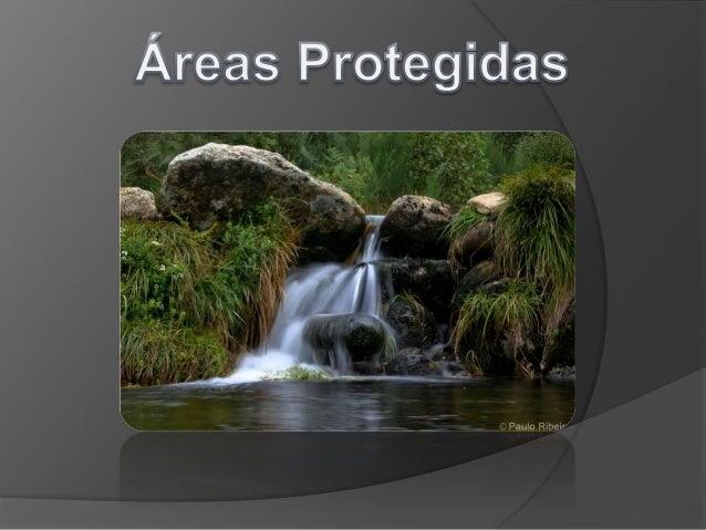 Neste trabalho vamos falar de: •O que são áreas protegidas •Sua importância •Tipos de áreas protegidas •Exemplo de áreas p...