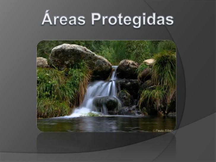 Neste trabalho vamos falar de:•O que são áreas protegidas•Sua importância•Tipos de áreas protegidas•Exemplo de áreas prote...
