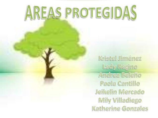 Areas protegidas1 .docx