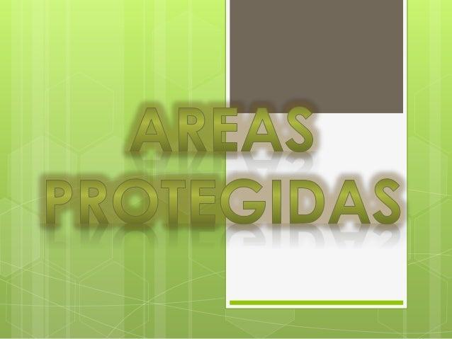  Las áreas protegidas son espacios determinados por un Estado sujeto a un  marco legal e institucional definido para gara...