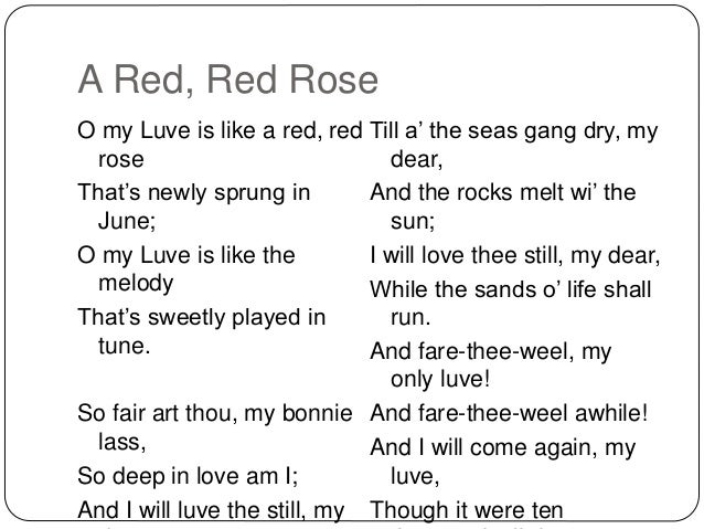 analytical essay red red rose My love is like a red red rose analysis / translation / guide my luve is like a red, red rose this is not an official analysis, in depth essay or suchlike.