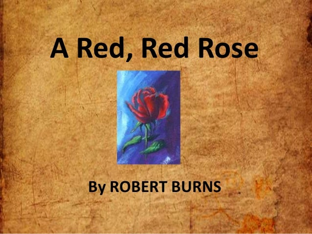 red red rose essay The following is robert burns' poem, a red, red rose write an essay in which you discuss how the literary devices convey the speaker's message.