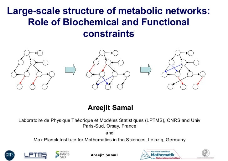 Large-scale structure of metabolic networks:    Role of Biochemical and Functional                constraints             ...