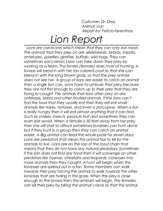 Customer: Dr. Dray Animal: Lion Report by: Felicia Ferentinos Lion Report Lions are carnivores which mean that they can on...