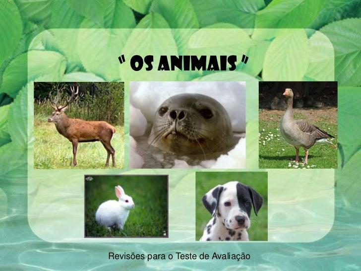 """"""" Os animais """"<br />Revisões para o Teste de Avaliação<br />"""
