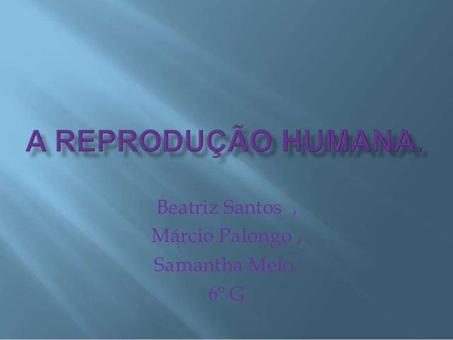 Beatriz Santos ,Márcio Palongo ,Samantha Melo.      6º G
