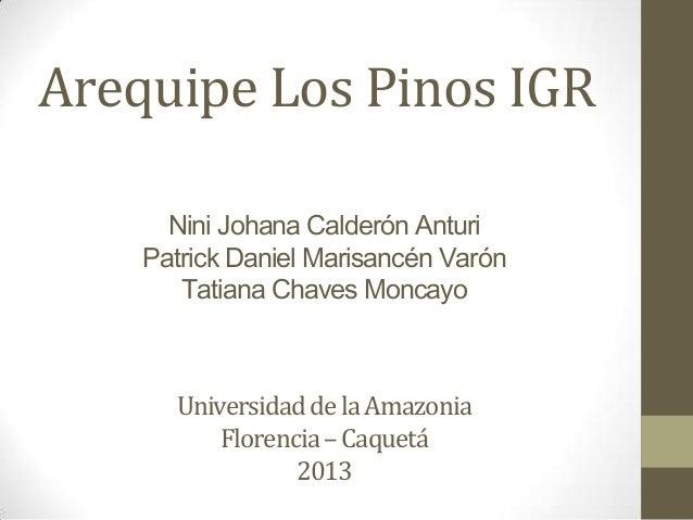 Arequipe Los Pinos IGR UniversidaddelaAmazonia Florencia–Caquetá 2013 Nini Johana Calderón Anturi Patrick Daniel Marisancé...