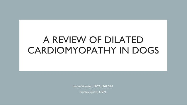 A REVIEW OF DILATED CARDIOMYOPATHY IN DOGS Renee Streeter, DVM, DACVN Bradley Quest, DVM