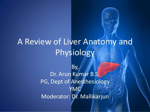 A Review of Liver Anatomy and         Physiology                 By,         Dr. Arun Kumar B.S.     PG, Dept of Anesthesi...