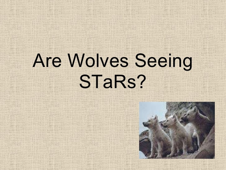 Are Wolves Seeing STaRs?