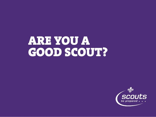 ARE YOU A GOOD SCOUT?