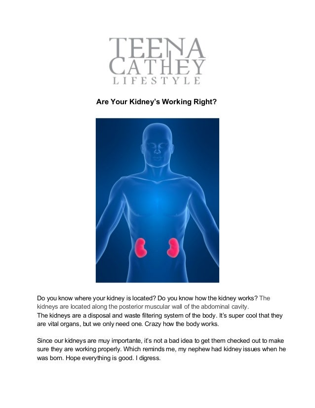 where are your kidneys - 638×826
