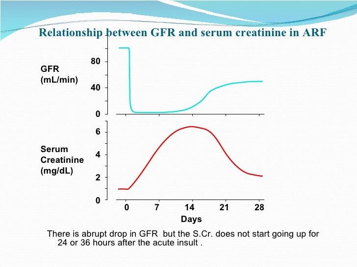 relationship between arf and raised serum creatinine