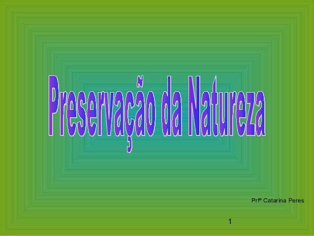 1 Prfª Catarina Peres