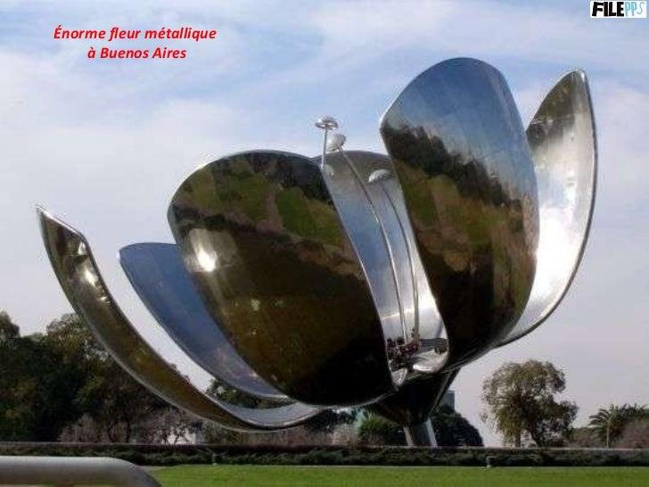 Énorme fleur métallique  à Buenos Aires