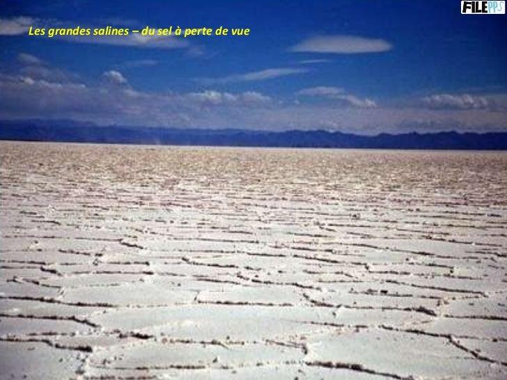 Les grandes salines – du sel à perte de vue