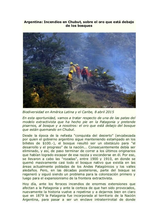 Argentina: Incendios en Chubut, sobre el oro que está debajo de los bosques Biodiversidad en América Latina y el Caribe, 8...