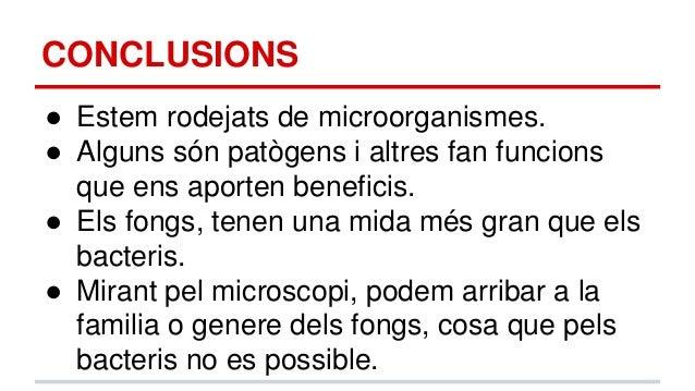 Microbiologia (Vessant Ambiental)  Estades Argó 2014-2015 a la UAB, fet per: Núria Gumà i Luis Casado