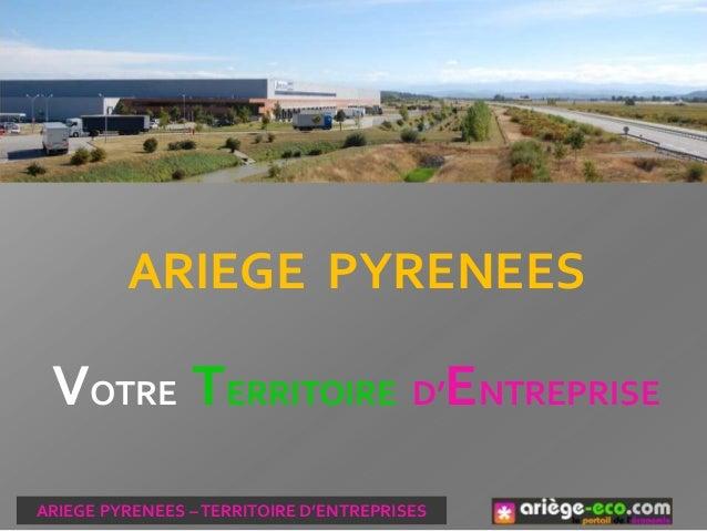 ARIEGE PYRENEES VOTRE TERRITOIRE D'ENTREPRISE ARIEGE PYRENEES –TERRITOIRE D'ENTREPRISES
