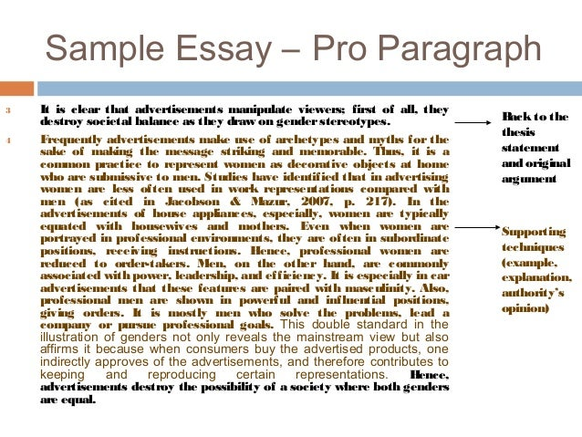 argumentative essay sample essay