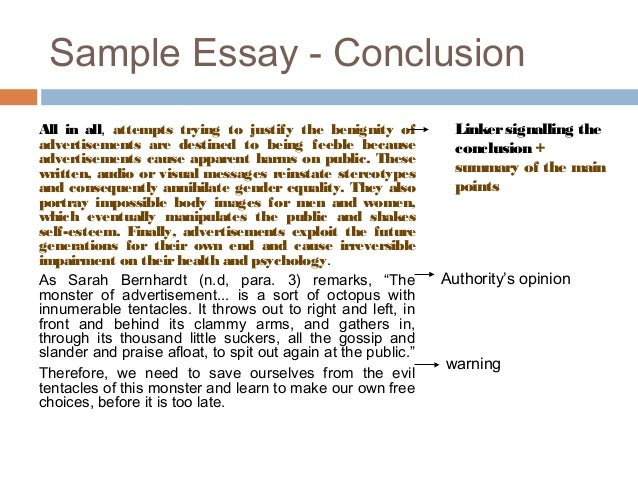 Argumentative essay fallacy