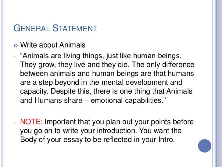 relationship between human and animal