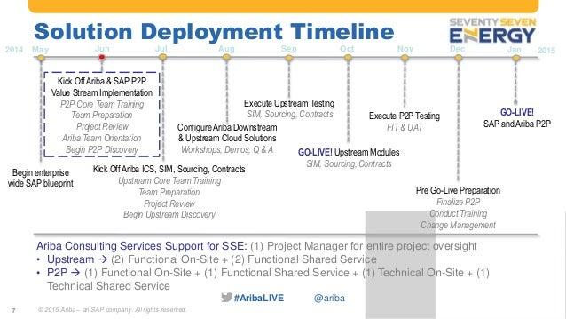 Ariba Services Implementation Customer Panel