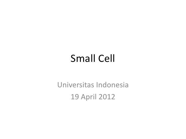 Small CellUniversitas Indonesia    19 April 2012