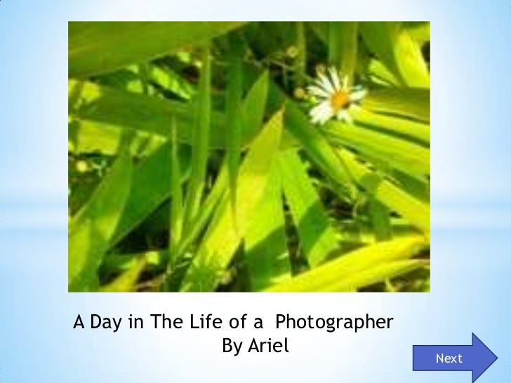 A Day in The Life of a Photographer                 By Ariel                                      Next