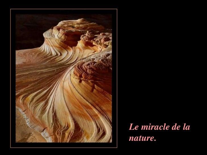 Je ne crois pas avoirexagéré quand je parlais ….Du Miracle de la natureAllez, bonne journée !