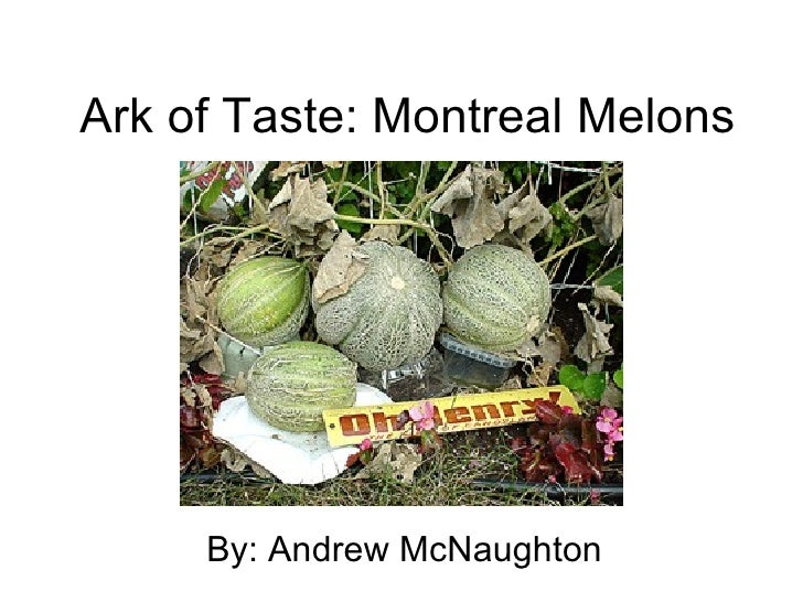 Ark of Taste: Montreal Melons By: Andrew McNaughton
