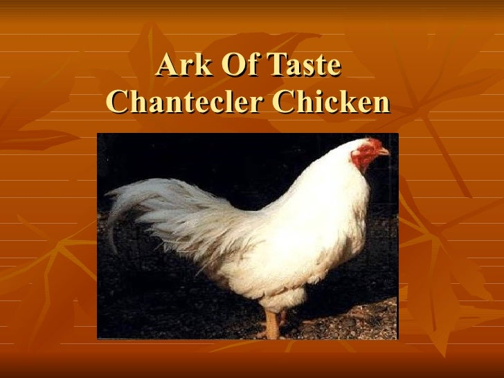 Ark Of Taste Chantecler Chicken