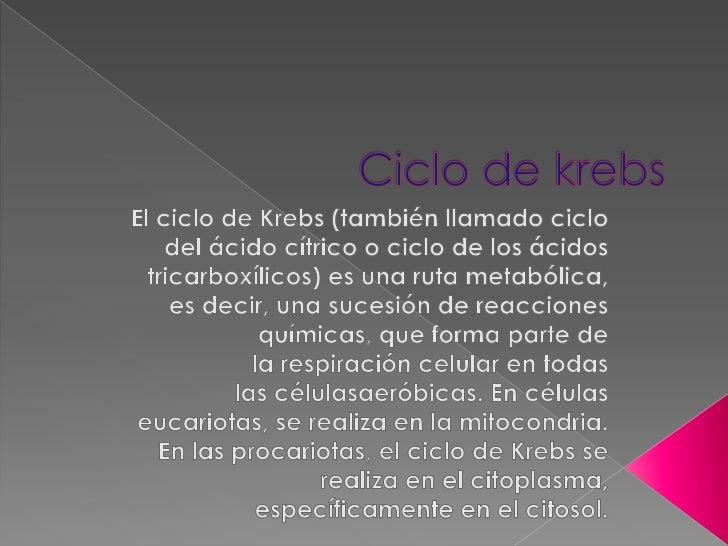 Ciclo de krebs <br />Elciclo de Krebs(también llamadociclo del ácido cítrico ociclo de los ácidos tricarboxílicos) es ...