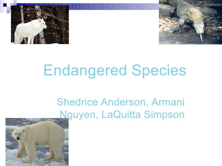 Endangered Species Shedrice Anderson, Armani Nguyen, LaQuitta Simpson