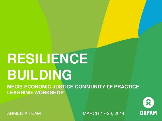 RESILIENCE BUILDING MECIS ECONOMIC JUSTICE COMMUNITY 0F PRACTICE LEARNING WORKSHOP ARMENIA TEAM MARCH 17-20, 2014