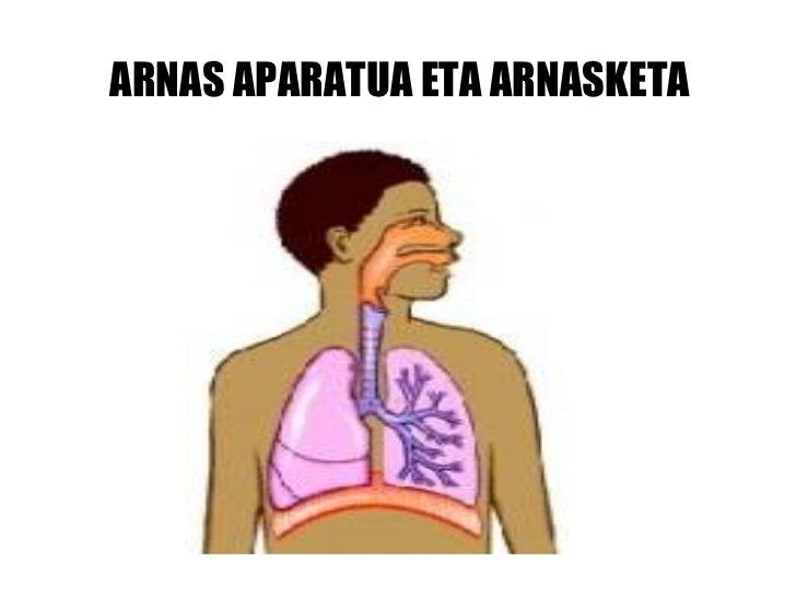 ARNAS APARATUA ETA ARNASKETA