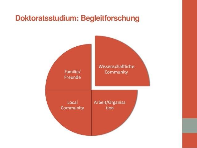 Wissenschaftliche Community  Arbeit/Organisation  Local Community  Familie/ Freunde  Doktoratsstudium: Begleitforschung