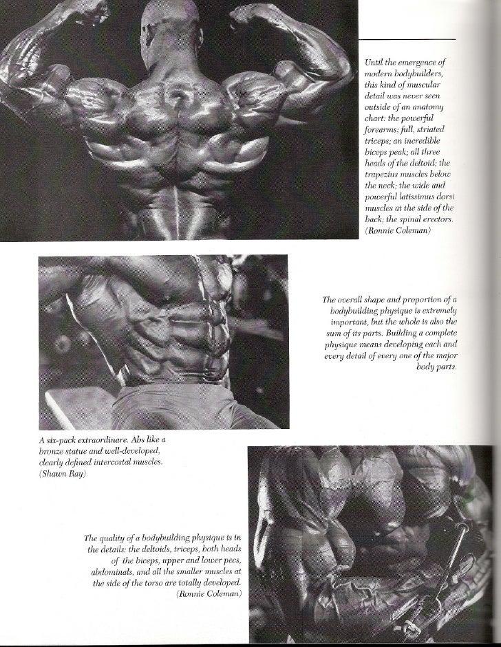 Único Bicep Anatomy Bodybuilding Foto - Anatomía de Las Imágenesdel ...