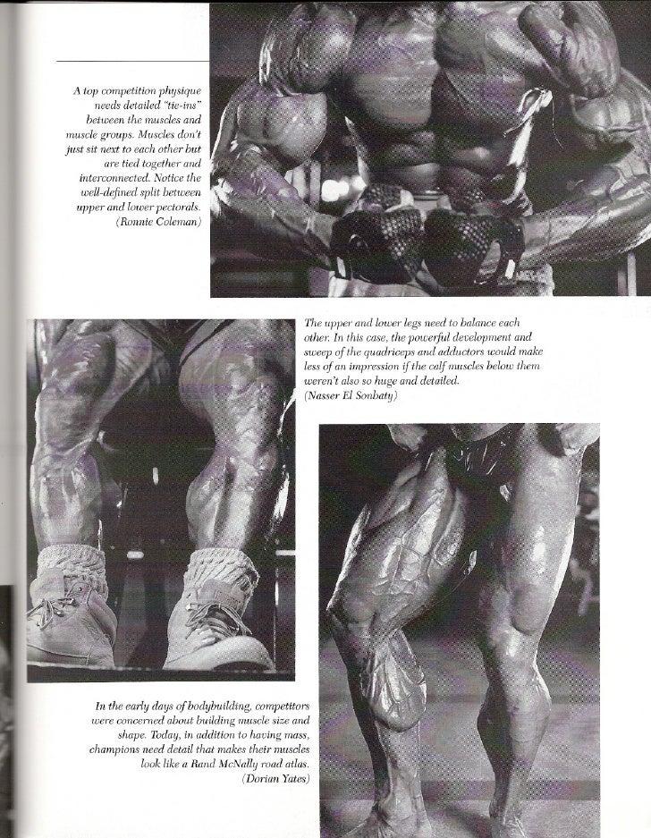 Arnolds basic training program ronnie coleman 13 malvernweather Images